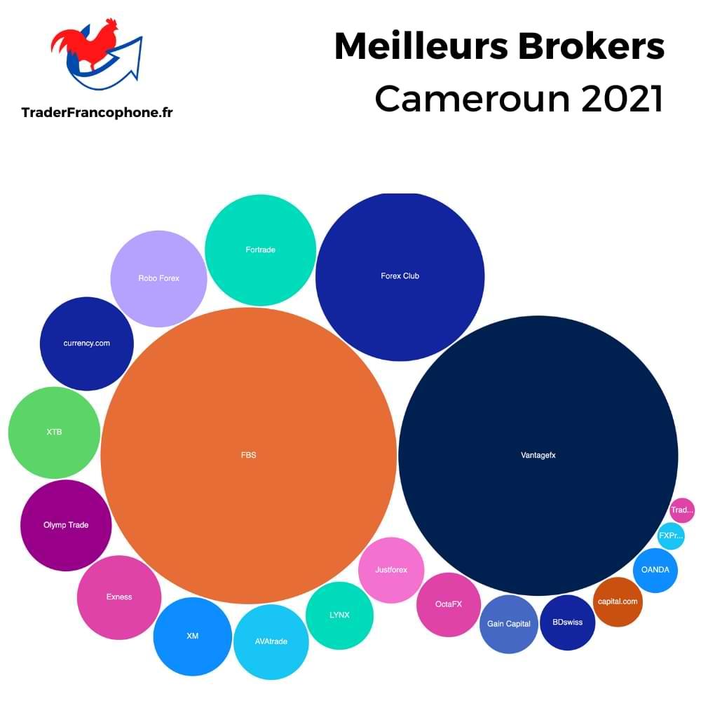 Meilleurs Brokers Cameroun