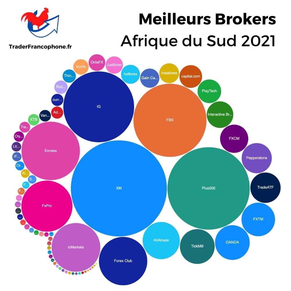 Meilleurs Brokers Afrique du Sud